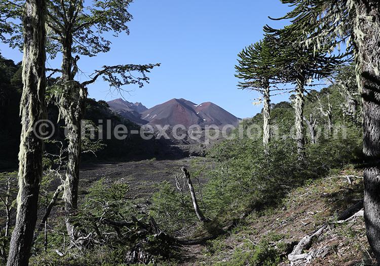 Volcan Sullipulli, Chilib avec l