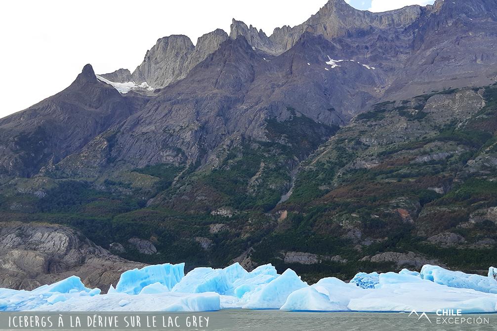Icebergs à la dérive sur le lac Grey, Patagonie, Chili