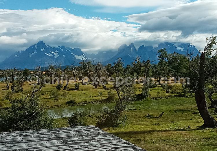 Parc national Torres del Paine, Hôtel Pampa lodge avec l'agence de voyage Chile Excepción