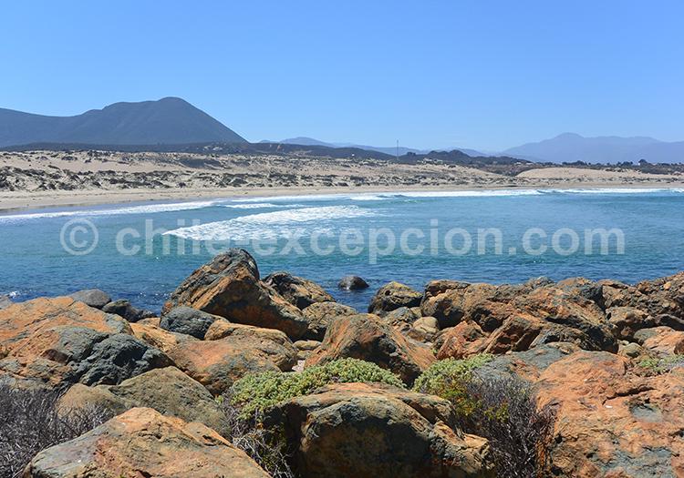 Station balnéaire du Chili, Pichidangui avec l