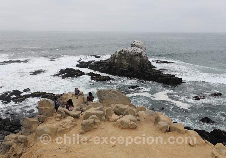 Vagues qui se déchainent à Punta de Lobos, Chili