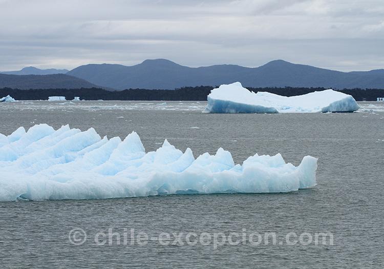 Visiter les glaciers du parc de la laguna San Rafael, Chili
