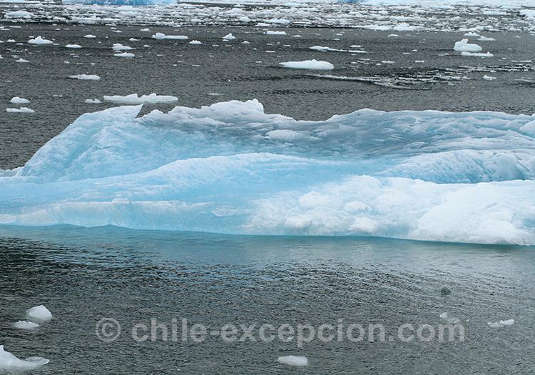 Que voir sur le lac San Rafael dans la Patagonie australe, Chili