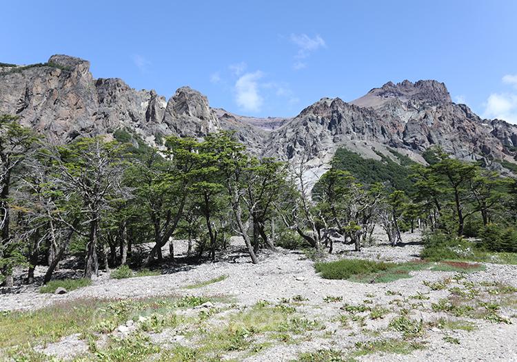 Visiter le parc national Cerro Castillo, Chili