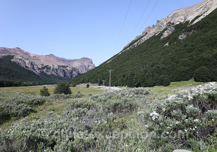 Paysages de la Patagonie australe, Cerro Castillo