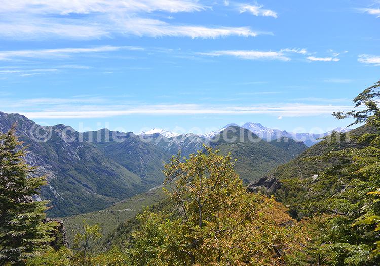 Au milieu de la réserve nationale Ñuble, Chili