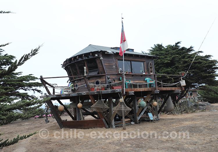 Gardes côtes du Punta de Lobos, Chili avec l'agence de voyage Chile Excepción