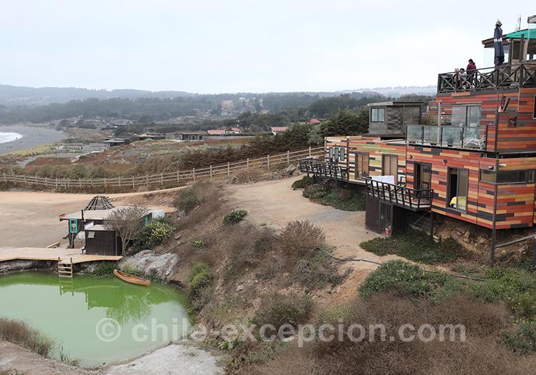 Punta de Lobos, Pichilemu, Chili avec l'agence de voyage Chile Excepción