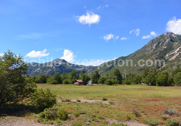 Que voir dans la région centre du Chili, la réserve nationale Ñuble, Chili