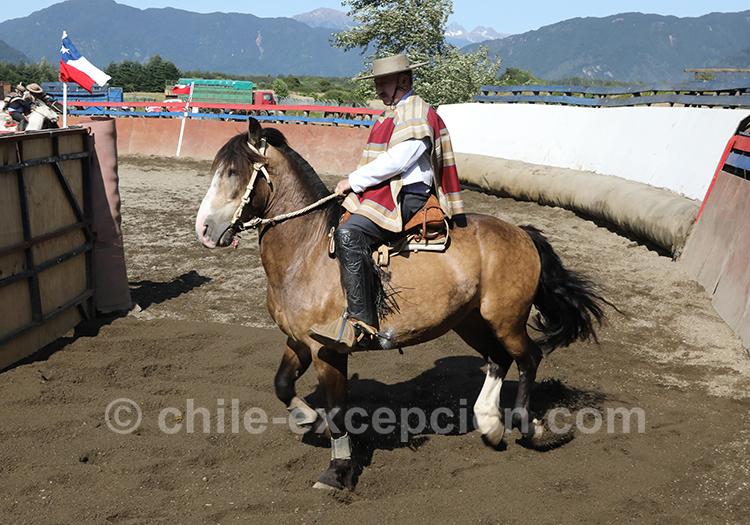 Huasos à cheval