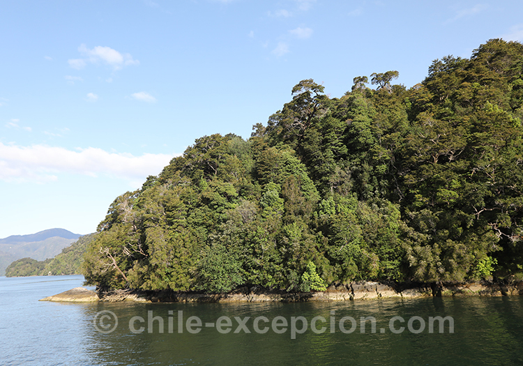 L'immensité du parc de la laguna San Rafael