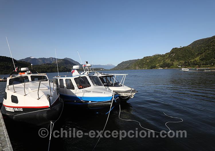 La pêche dans la baie Acantilada, Puerto Chacabuco Chili