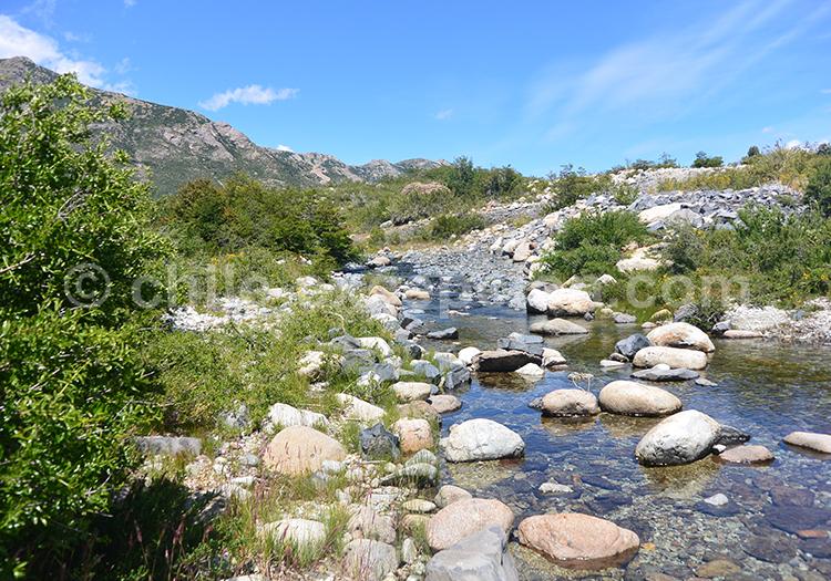 Petit cours d'eau de la réserve nationale Ñuble, Chili