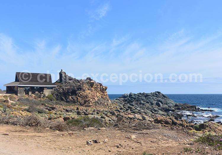 Pichidangui, superbe plage de la station balnéaire chilienne