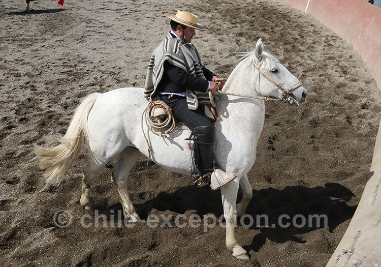 Un huaso, l'homme emblématique de la Patagonie chilienne
