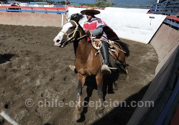 Habit traditionnel du huaso, le gaucho chilien