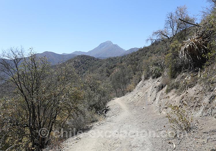 La Campana, parc national de la région centre du Chili