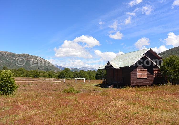 Grands espaces de la réserve nationale Ñuble, Chili
