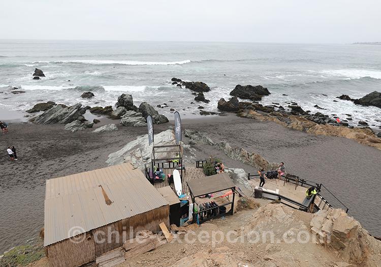 Visiter Punta de Lobos, Chili