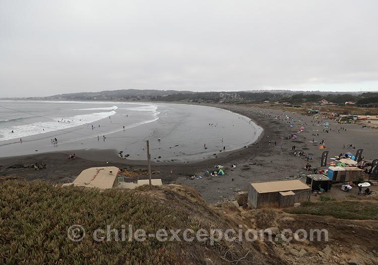 Que voir à Punta de lobos au Chili