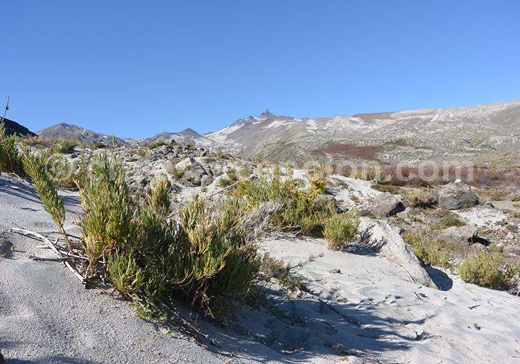 Randonnées au Chili dans les parcs Radal Siete Tazas et parc Inglés