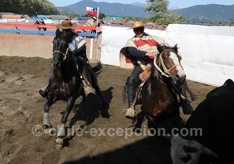 2 cavaliers au Chili