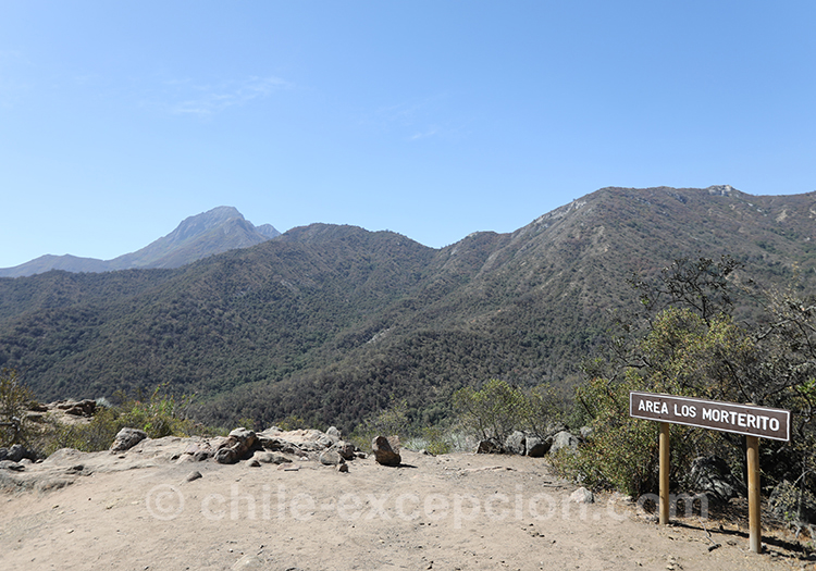 Se balader dans le parc national la Campana, région centre du Chili