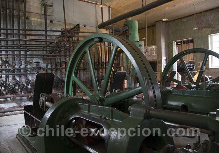Quel musée voir près de Puerto Natales, musée historique frigorifico
