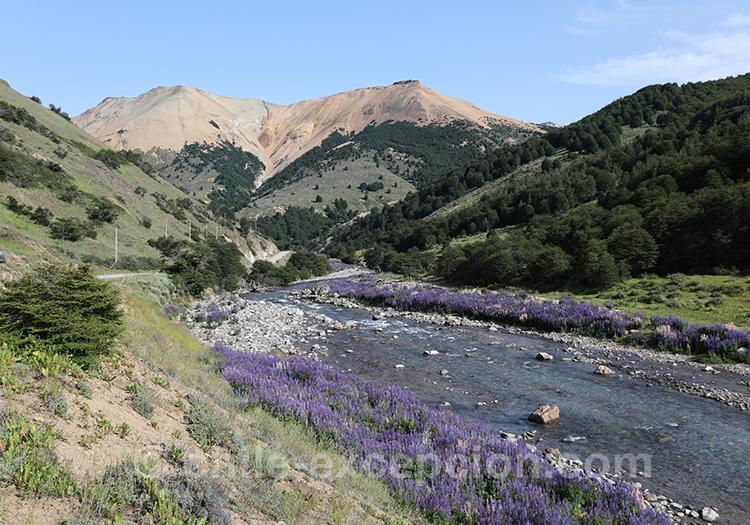 Rivière du parc national Cerro Castillo, Chili