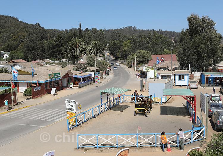 Partir à Cahuil au Chili avec l