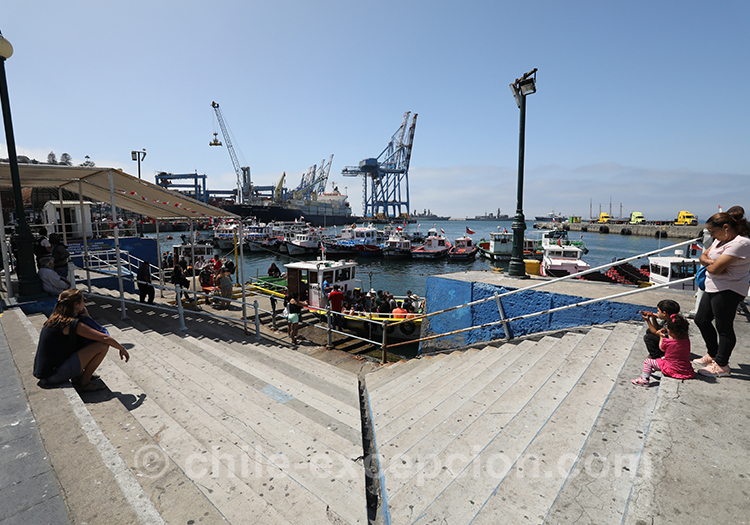 Le port de pêche de Valparaiso, Chili