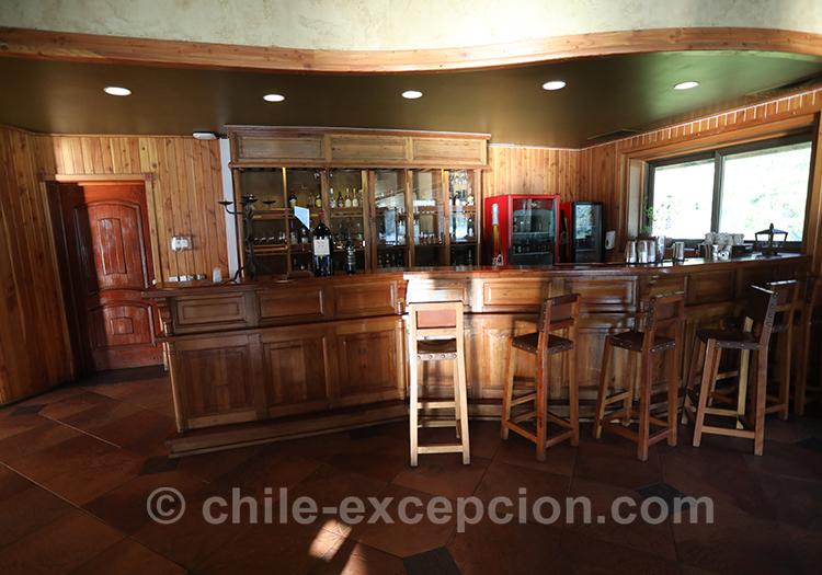 Bar de l'hôtel Loberias del Sur, Chili