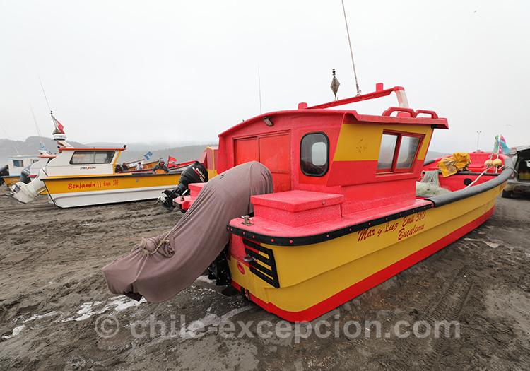 Comment se rendre à Bucalemu, Chili