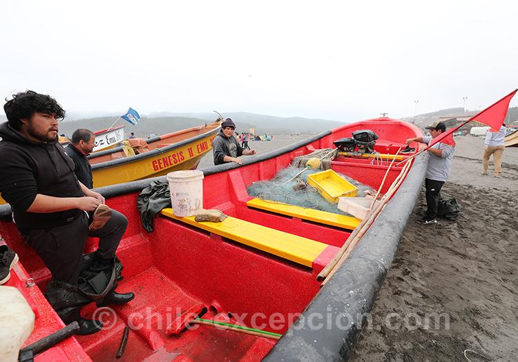 Comment aller à Bucalemu, Chili