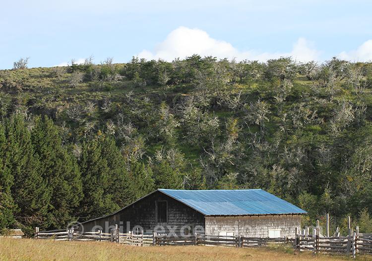 Paysages de Patagonie au Chili dans la région de Coyhaique