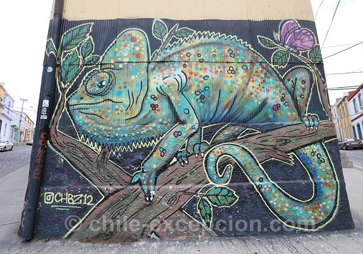 Peinture Caméléon à Valparaiso