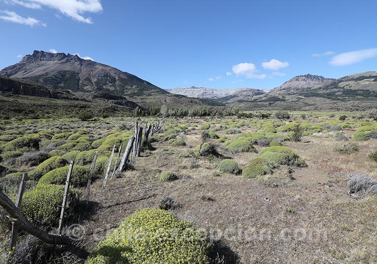 Quels paysages voir en Patagonie australe au Chili