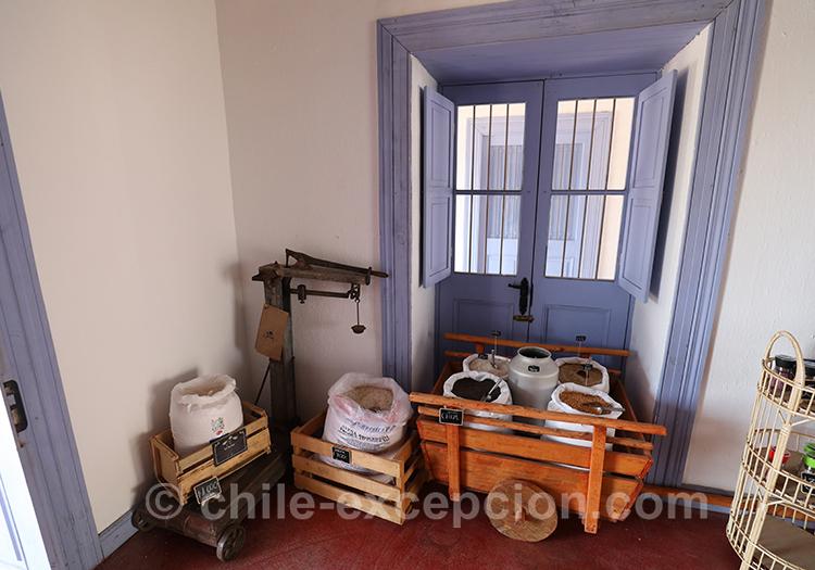 Pourquoi visiter Lolol, village du centre du Chili