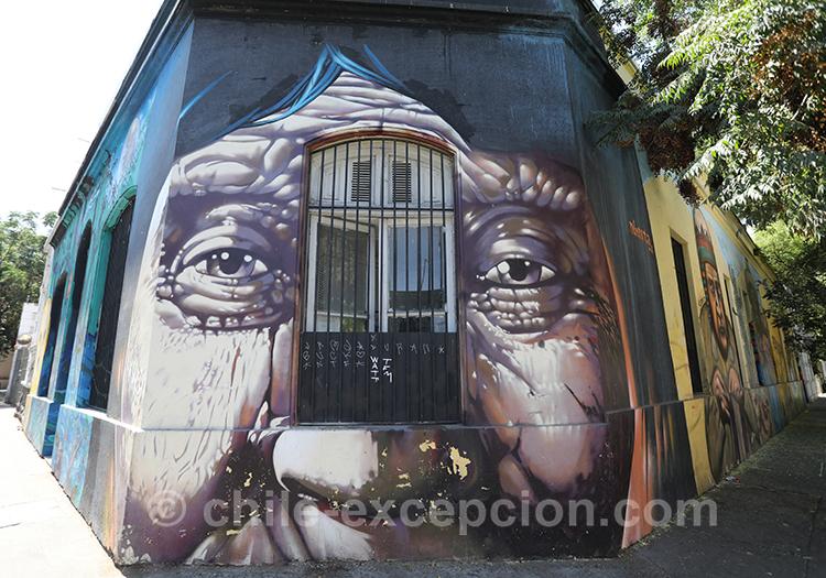 Que voir à Yungay, Chili avec l'agence de voyage Chile Excepción
