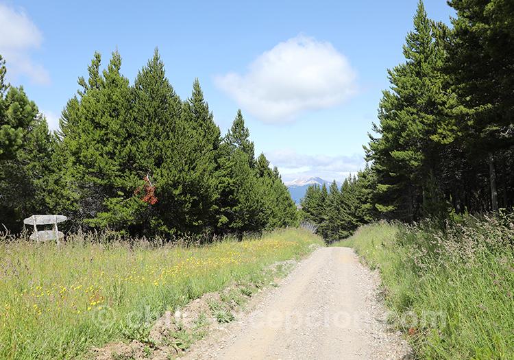 Que voir dans le parc national de Coyhaique, Chili