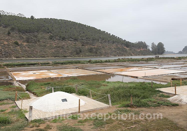Que voir à Cahuil, les salines de Cahuil, Chili
