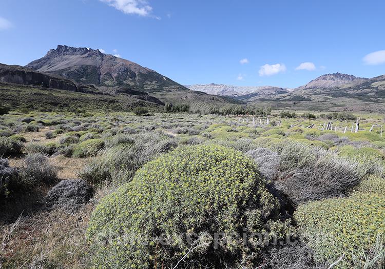 Circuit autotour dans la Patagonie australe du Chili
