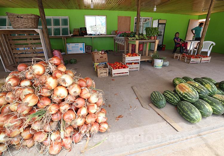Vente de fruits et légumes dans le village de Paredones, Chili