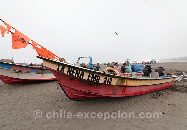 La côte Pacifique chilienne à Bucalemu, Chili