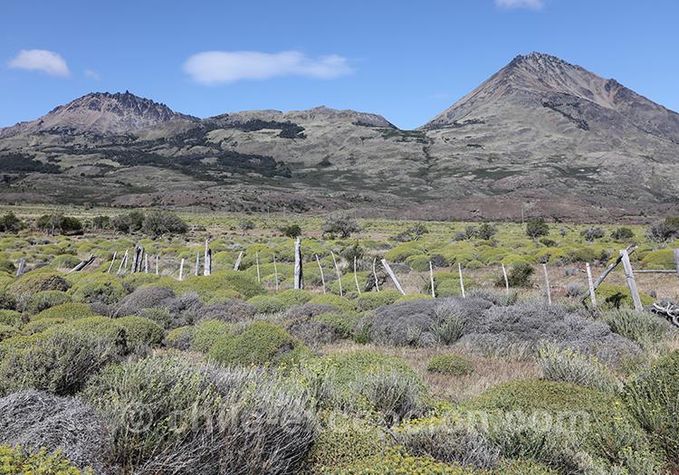 Road trip au Chili en Patagonie australe