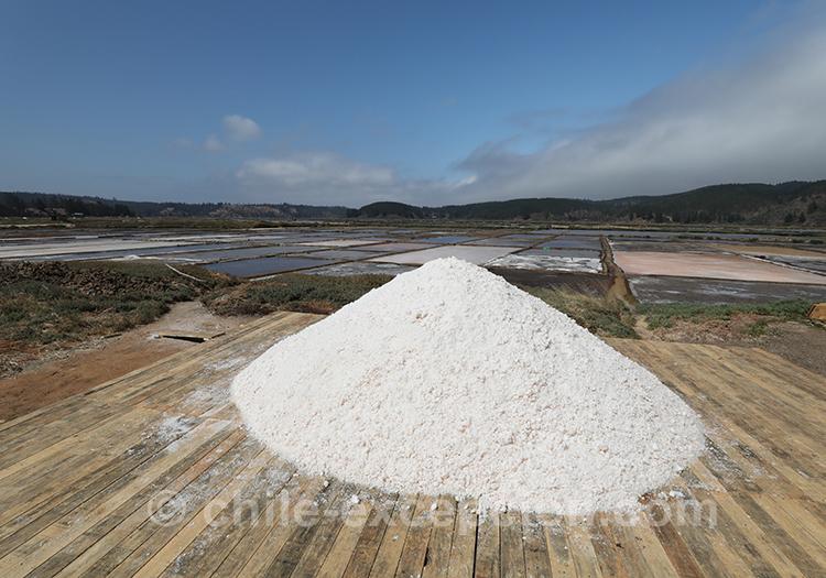 Tas de sel aux salines de Cahuil au Chili