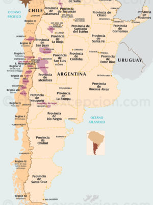 Vins Chili et Argentine