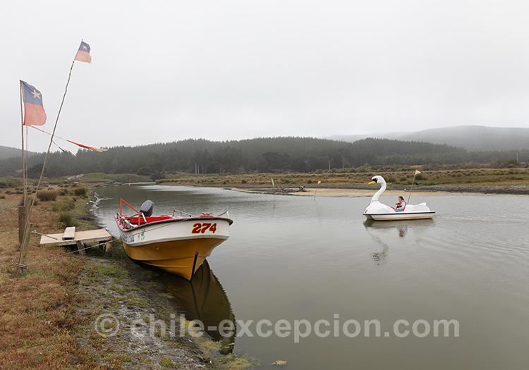 Petite balade en pedalo à Bucalemu, Chili