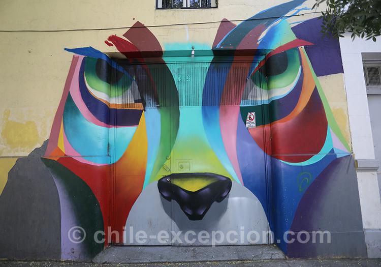 Peinture d'animal en couleur, Yungay, Chili avec l'agence de voyage Chile Excepción