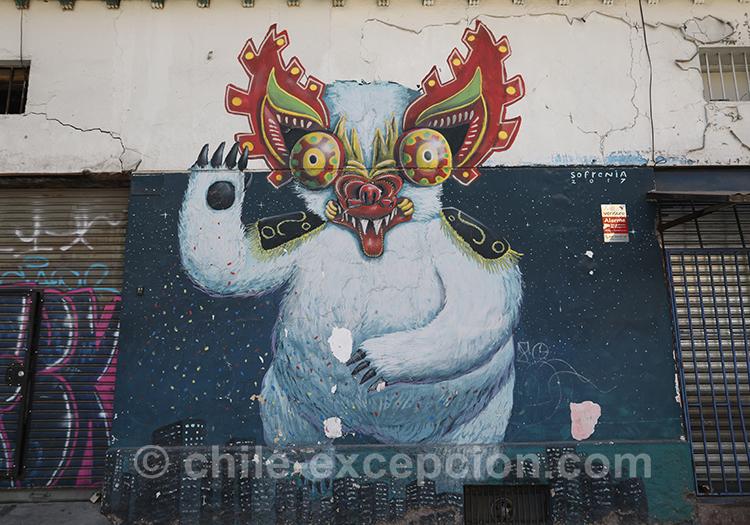 Dragon à Yungay, Santiago avec l'agence de voyage Chile Excepción